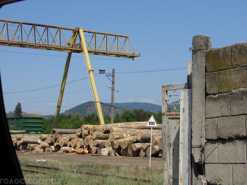 З Мукачева продовжують відвантажувати деревину невідомого походження