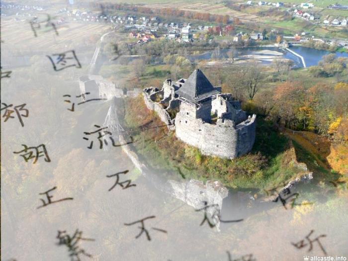 Наразі на Закарпатті триває програма з відновлення історичної пам'ятки архітектури Невицьокого замку.