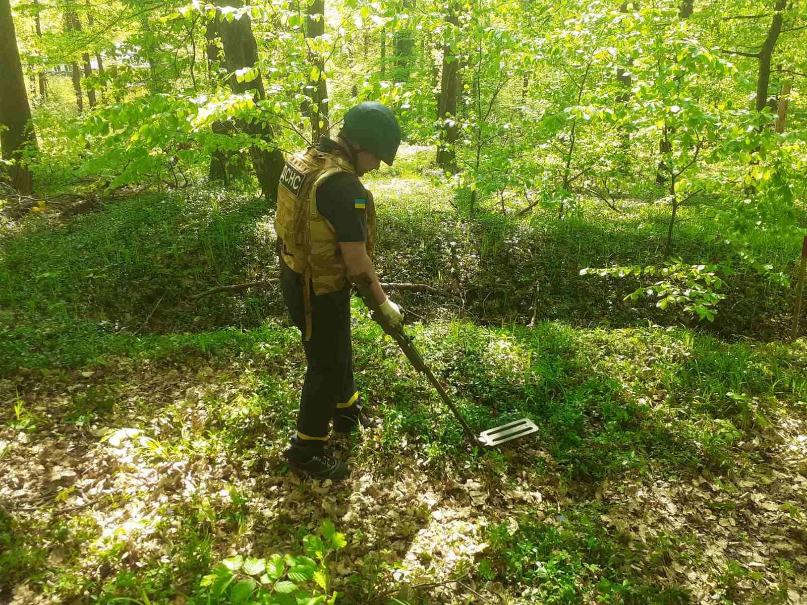 Гуляв у лісі та знайшов… боєприпаси.