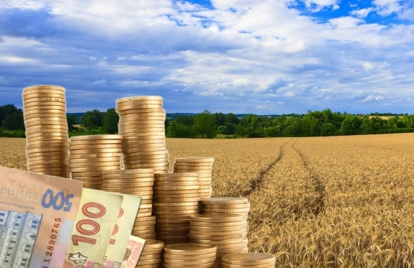 Через несплату підприємством 400 тис грн оренди, на Хустщині прокуратура вимагає розірвати укладений договір та звільнити 9,5 га комунальної землі.