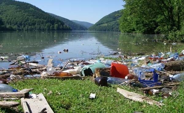 На Закарпатті склалася критична екологічна ситуація. На річках зібралось стільки сміття, що з нього утворилися затори.