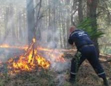 У горах Воловеччини гасили пожежу в лісі