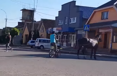 В мережі показали, як виглядає циганська колісниця на Закарпатті (ВІДЕО)