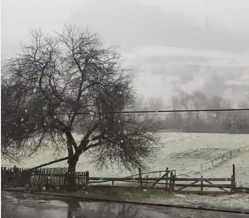 На межі Львівської та Закарпатської областей знову помітили зиму.