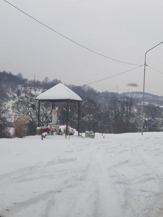 Інцидент трапився на Свалявщині.