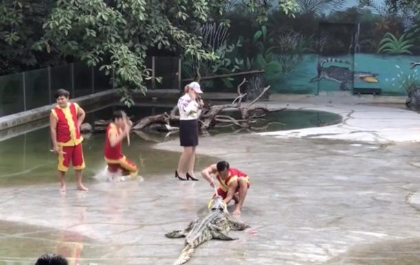 Китаєць упав у басейн з крокодилами під час шоу (ВІДЕО)
