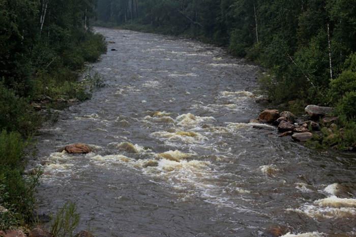 Очікується підвищення рівнів води на 0,5 - 1,5 м.