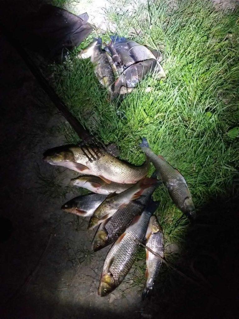 Ущерб, причиненный рыбному промыслу, составил 1 998 гривен.