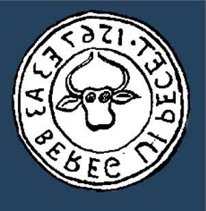 Великі Береги – село Берегівського р-ну, Закарпатської області. Колишня назва Береги, Нодь Берег.