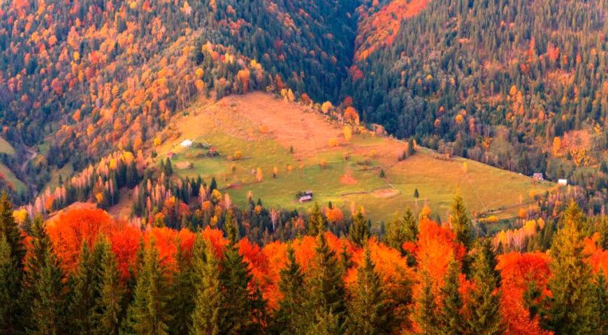 Температура повітря вночі 1-6°, вдень 12-17° тепла, в горах місцями вночі до 2° морозу, вдень 7-9° тепла.