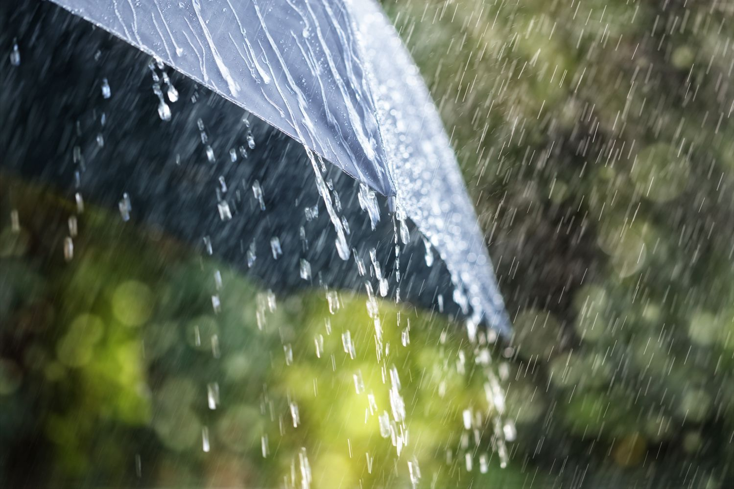Об ухудшении погоды сообщает Закарпатский гидрометцентр.