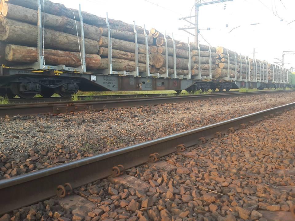 Сьогодні вранці до чопських активістів надійшла інформація про те, що у зоні митного контролю вантажних перевезень у місті Чоп до відправки за кордон готують понад 20 вагонів лісу.