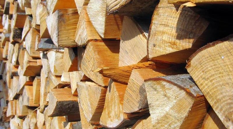 Берегівські лісівники назвали ціни на дрова в 2018 році