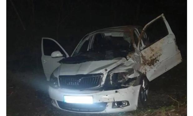 Авария произошла в селе Данковица.