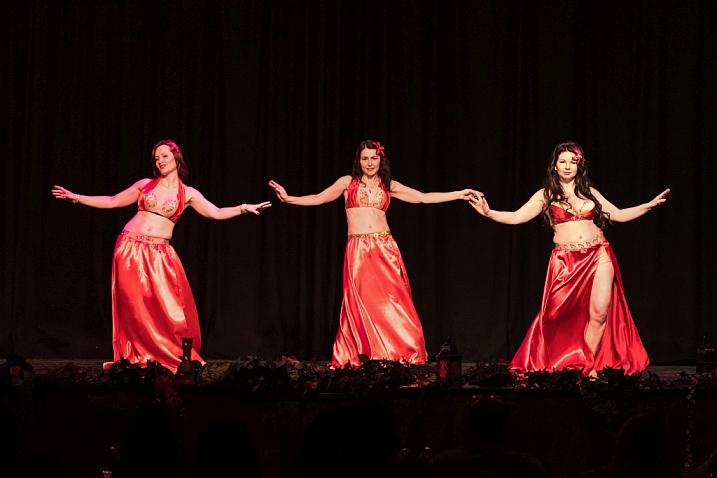 Ужгородські танцівниці здобули призові місця на фестивалі східних танців у Будапешті