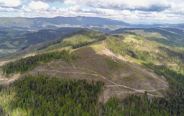 Гірський регіон опинився в небезпеці через незаконну вирубку лісів і зміни клімату, попередили в ООН.