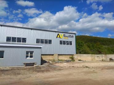 Нещодавно жителі Мужієва дізналися, що на території золоторудника компанія-інвестор Avellana Gold збирається утилізувати відвали, які залишилися після розробки родовища попопередніми підприємствами.