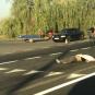 В Закарпатті сталася смертельна ДТП: водій втік з місця аварії (ВІДЕО)