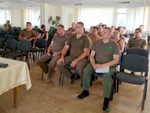 Дикі кабани завдяють шкоди сільськогосподарникам Виноградівщини