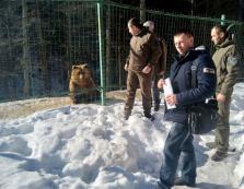 """Національний парк """"Синевир"""" перевірили на дотримання вимог з охорони праці"""