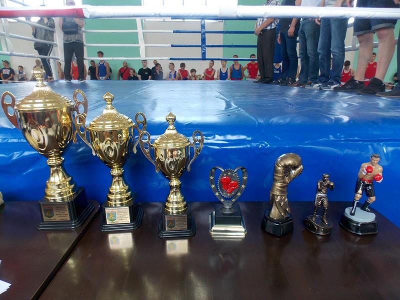 """У місті в залі навчально-спортивної бази """"Закарпаття"""" стартував міжнародний турнір з боксу на Кубок мера та угорського консула Берегова."""