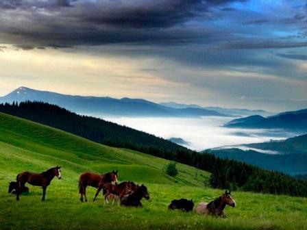 Температура повітря вночі 7-12°, вдень 18-23°, в горах подекуди вночі до 4°, вдень 9-14° тепла.