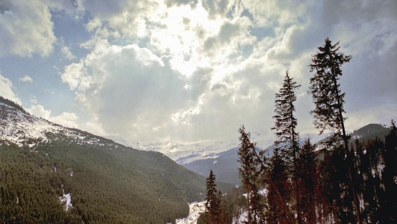 У румунських Карпатах вперше випав сніг в липні. Опади зафіксували в ніч з вівторка на горі П'єтрос на висоті 2300 метрів.