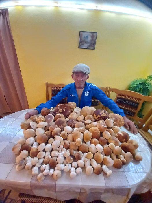 Світлиною із упольованими білими грибами, які ледь поміщаються на столі, поділились у мережі Фейсбук.
