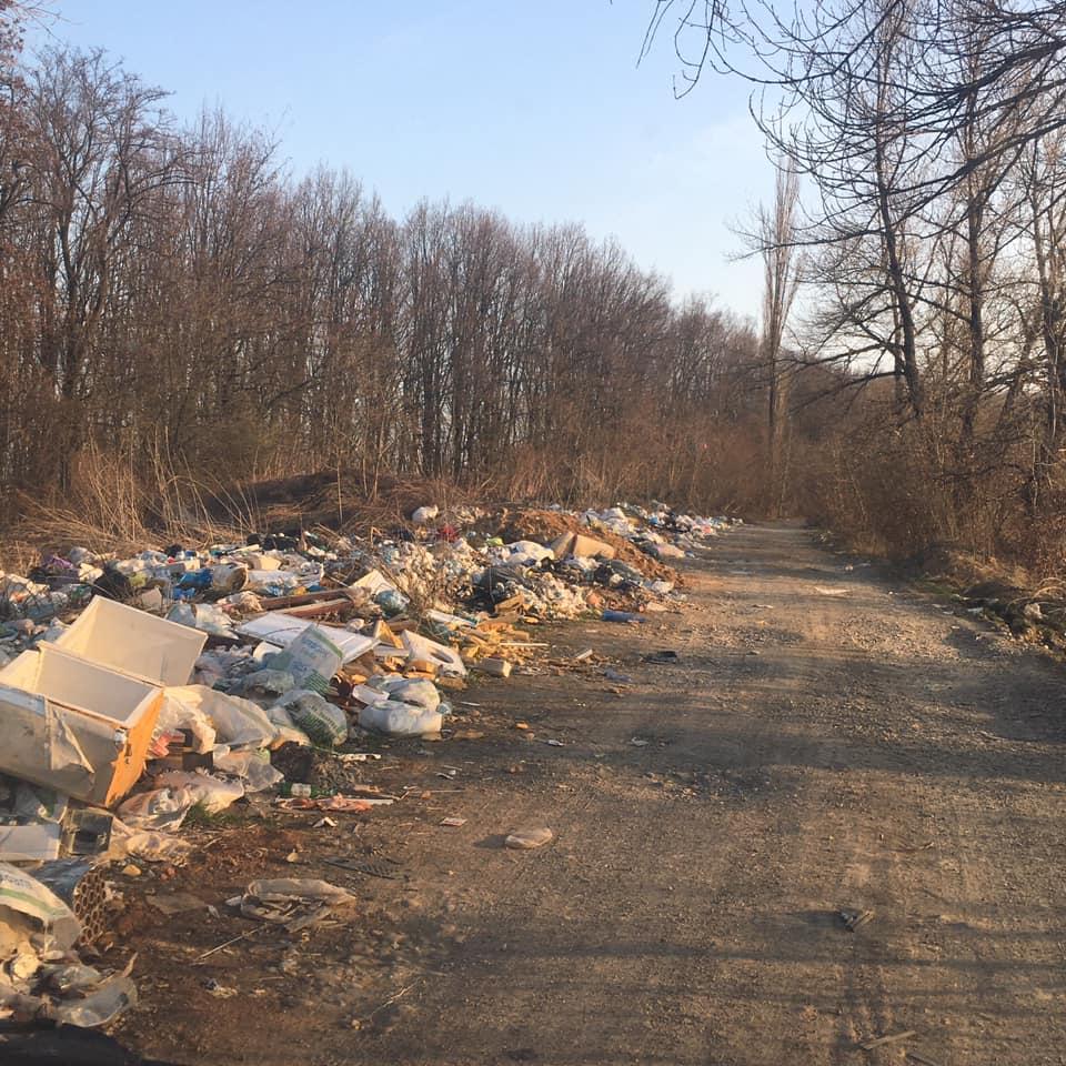 Купи побутових відходів викинуті просто обабіч бічної дороги у селі Велика Копаня, що на Виноградівщині.