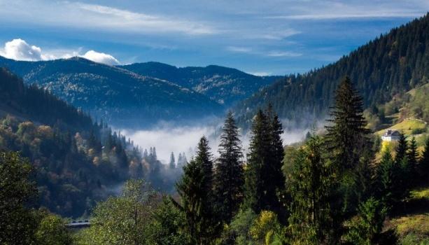 У Карпатському регіоні очікуються підвищення рівнів води на 0,3-1,5 м, можливе формування значного схилового стоку і локальних селевих потоків.