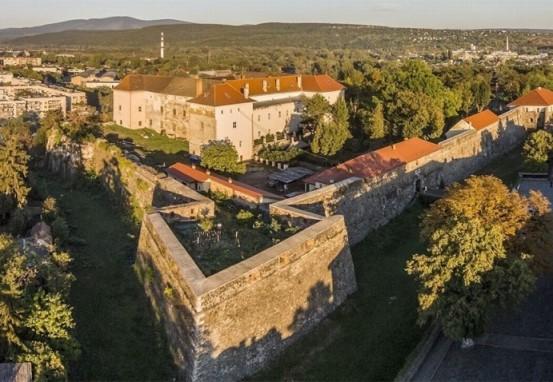 Закарпатський обласний краєзнавчий музей став першим серед українських музеїв, який має власний обліковий запис у молодіжній соцмережі TikTok.