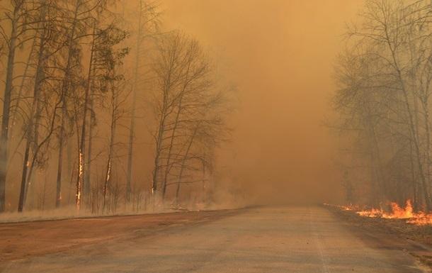 Через навмисний підпал невідомою особою в п`ятницю 10 квітня відбулося загорання підстилки лісу, що призвело до пожежі у лісовому фонді Велятинського лісництва ДП «Хустське ЛДГ».