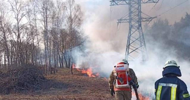 ПрАТ «Закарпаттяобленерго» нагадує про заборону спалювання сухотрав'я та чагарників уздовж ліній електропередач.