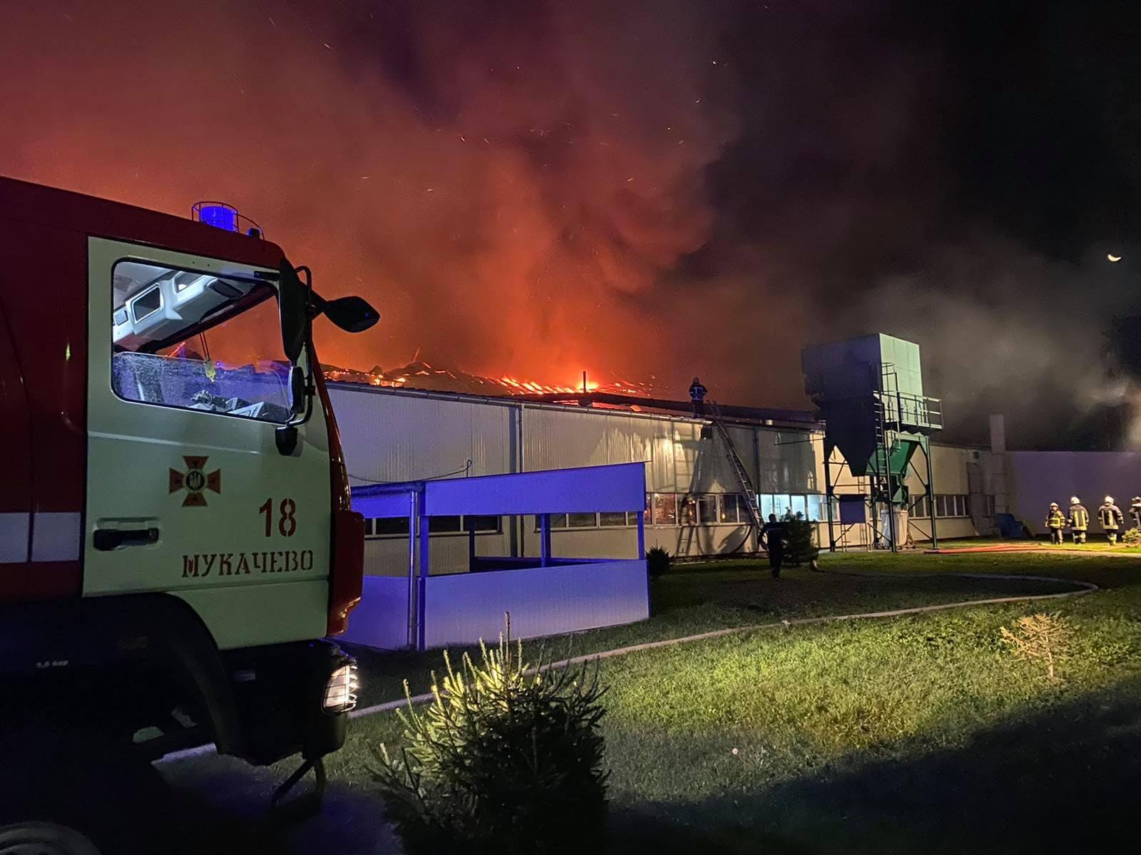 Директор мукачівської фабрики «Фішер» прокоментував резонансну пожежу на підприємстві.