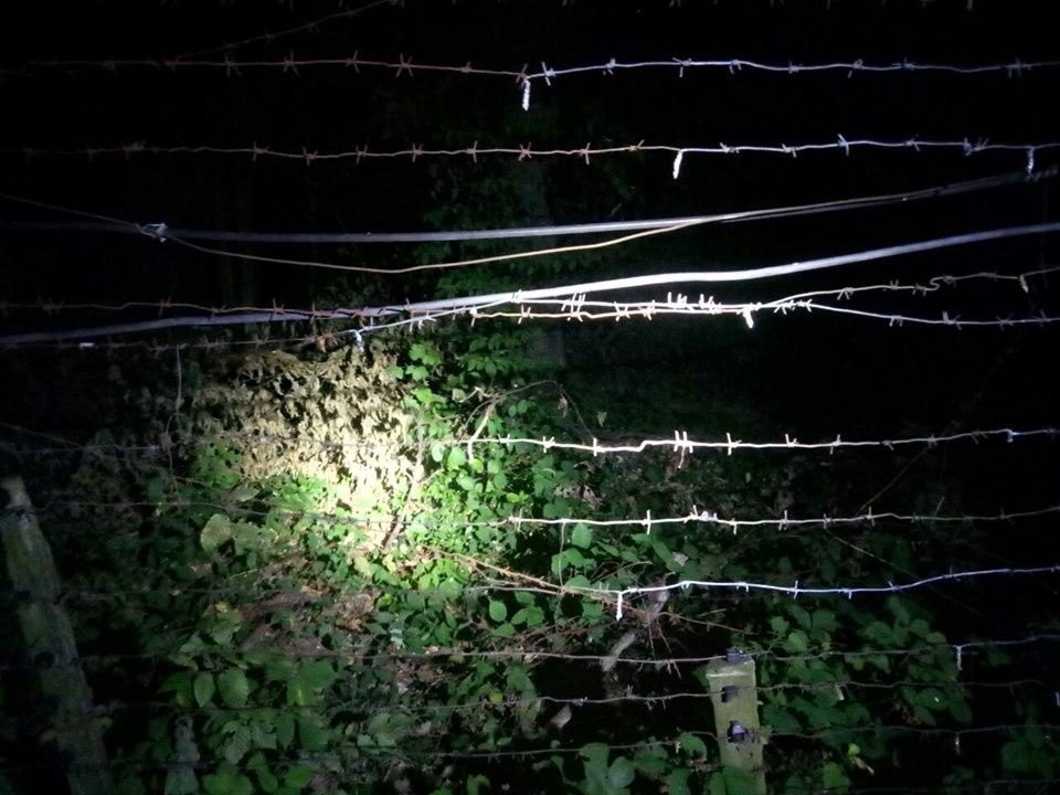 Протягом останньої доби прикордонникам відділу «Ужгород» вдалося затримати четверо незаконних мігрантів, які намагалися дістатися Словаччини поза пунктами пропуску.
