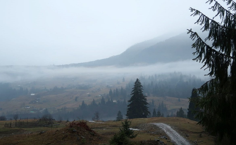 Температура повітря вночі 2-7°, вдень 11-16° тепла, в горах місцями вночі 0-2° морозу, вдень 4-9° тепла.