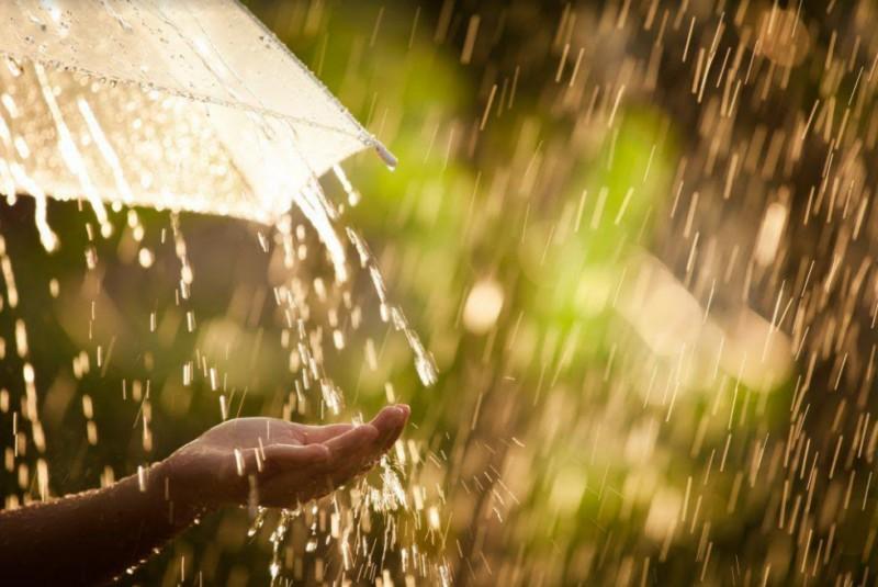 За даними Закарпатського обласного центру з гідрометеорології у найближчий час на Закарпатті та в Ужгороді можливі значні зливові дощі, грози.
