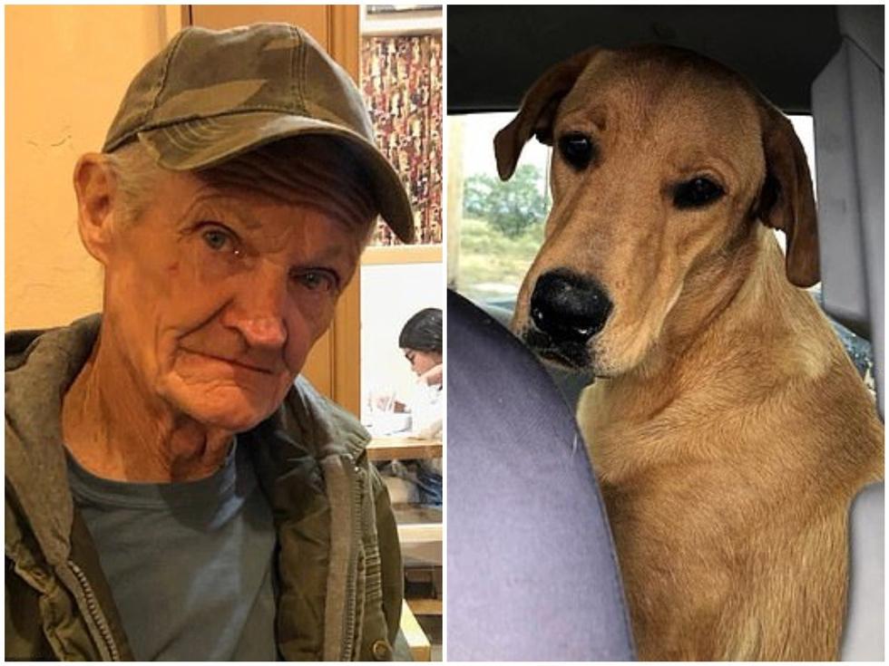 Собака вистрілив в спину своєму 74-річному господареві