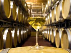 17-ий фестиваль вина на Берегівщині проходитиме на початку березня у центрі міста. Про захід інформували в Ужгородському прес-клубі