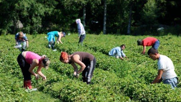 У Польщі заробітчанам пропонують умови гірші, ніж у місцевих