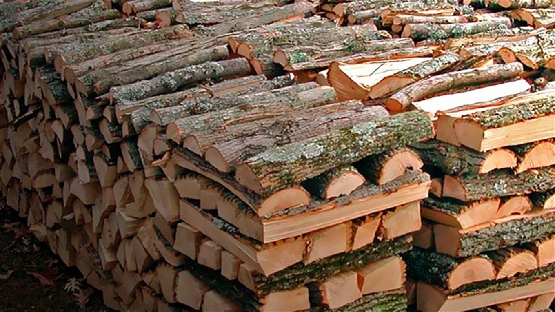 Ціни на лісопродукцію у Закарпатті найнижчі в Карпатському регіоні.