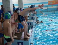 В Ужгороді відбулася відкрита першість міста з плавання