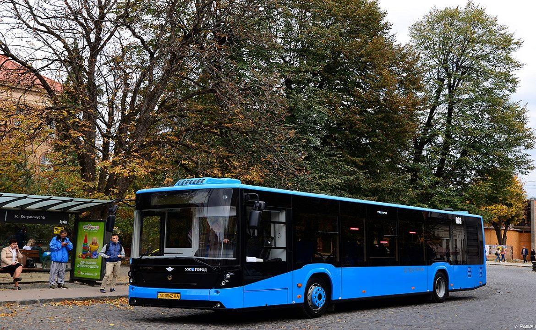 В Ужгороді на засіданні виконкому затвердили перелік місць для паркування туристичних автобусів, інформує пресслужба міської ради.