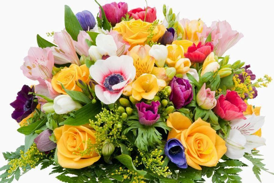 красивые картинки с днем рождения с цветком эти