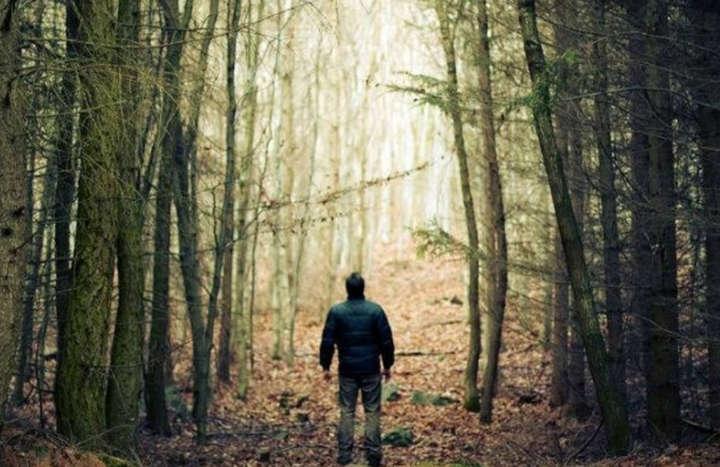 Чоловік пішов по гриби ще 5 листопада і досі не повернувся.