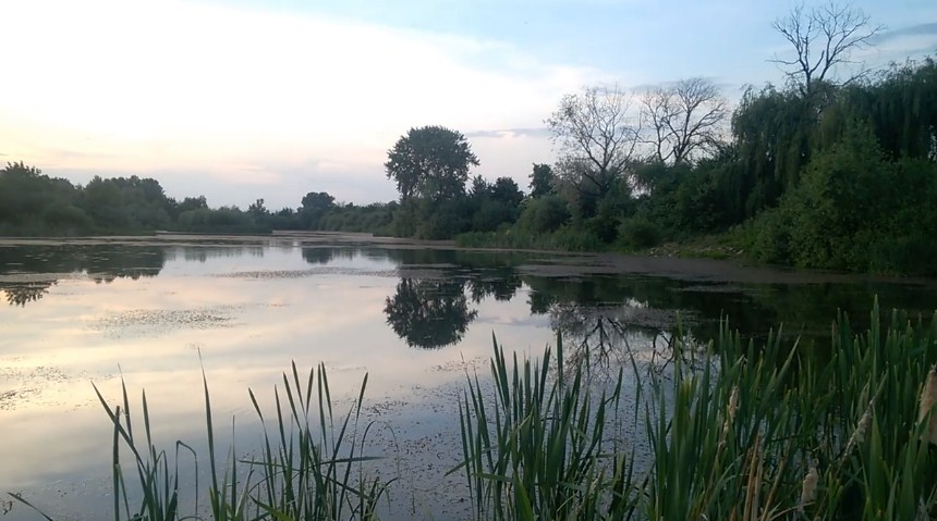 В мережі показали маловідоме Чорне озеро в Ужгороді (ВІДЕО)