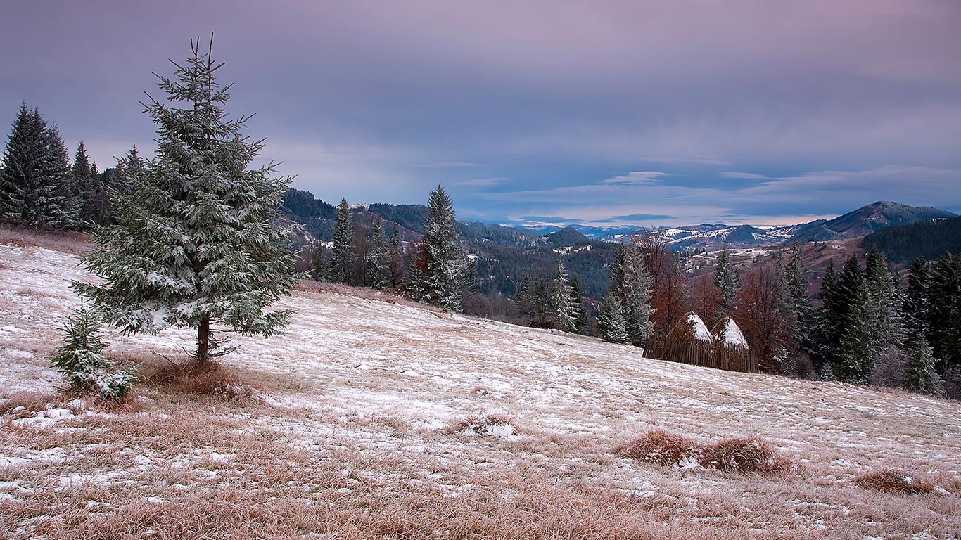 Метеоролог розповів, коли в Закарпатті випаде сніг