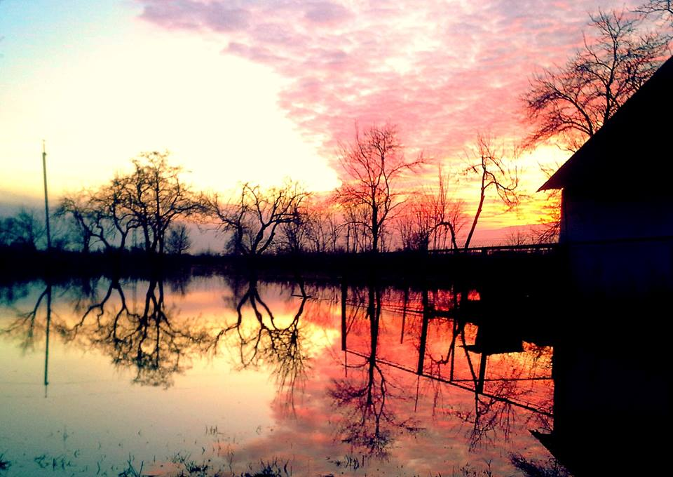 Стихія і краса. В мережі оприлюднили світлини з заходом сонця над затопленими господарствами закарпатців