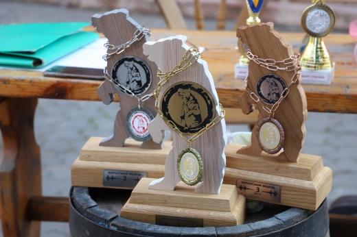 Два силові турніри в один день – XVII силовий турнір Карпатський медвідь 2020 та XII силовий турнір Юніор стронгмен 2020 – сьогодні у центрі Ужгорода.