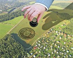 На Берегівщині через суд повертають у державну власність землі вартістю понад 2 млн грн